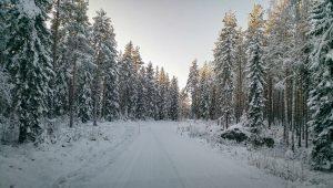 Vinterparadiset Järvsö
