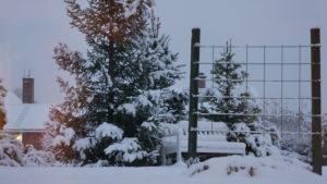 Snöfall i Järvsö