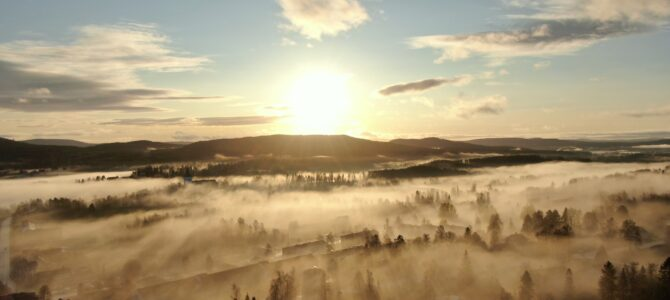 Danne summerar året 2020 i Järvsö