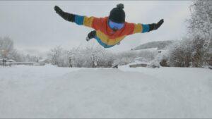 Danne dyker i snön