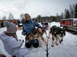 Sweden Husky Tours